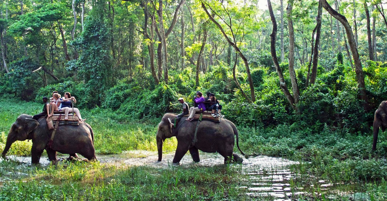 Green Park Chitwan – 4 Days